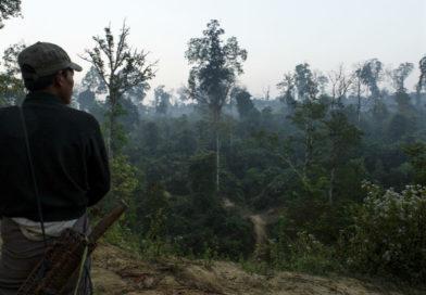 Avola. Taglia gli alberi di un terreno e minaccia il proprietario. Denunciato dalla polizia