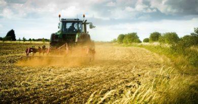 """""""Agricoltura, paesaggio e cambiamenti climatici"""", oggi all'Urban Center"""