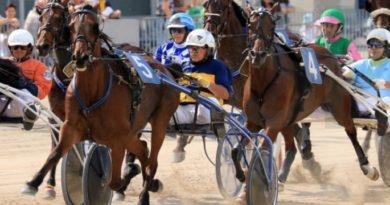 Siracusa: Kermesse ippica alla Sis con 260 cavalieri