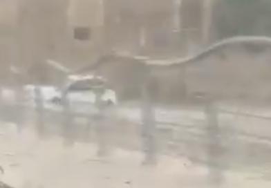 (Video) Maltempo ad Avola, auto in panne al Borgo marinaro